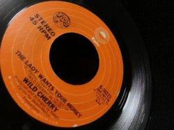 画像3: DJ HARVEYプレイ★WILD CHERRY-『PLAY THAT FUNKY MUSIC』